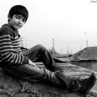 David :: Liana Harutyunyan