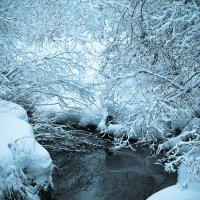 Зима... :: Алёна Райн