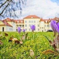 На пороге весны... :: Svetlana Sneg