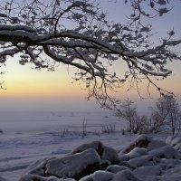 Была зима :: Людмила Алексеева