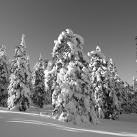 зима на Таганае :: евгений Смоленцев