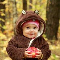 Мишка решил полакомиться яблочком :: Римма Тумриева