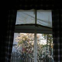 вид из дачного окна :: Лидия кутузова