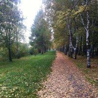 Осенняя тропинка :: Мария Погодина