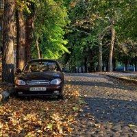 Улицы моего города :: Ольга Мальцева