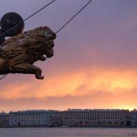 Вид на Дворцовую набережную с Петроградской стороны :: Владимир Горубин