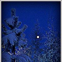 Февраль и луна. :: Лариса Красноперова