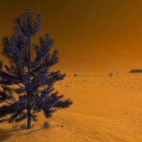 Зима на Марсе :) :: Валерий Шибаев