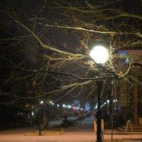Ночь, фонарь... :: Сергей Офицер