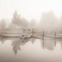 Анна Пакутина - В ожидании нового дня :: Фотоконкурс Epson
