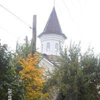 осень :: Валентина Беккер