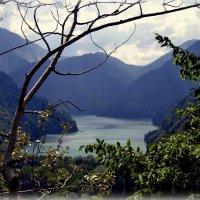 Озеро Рица. :: Лариса Красноперова