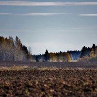 Осень :: Зинаида Молчанова
