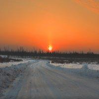 На зимнике :: Nikita Volkov