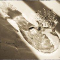 И свет, и тень, и блеф полутонов :: Ирина Данилова