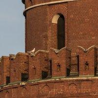 Белый голубь на кремлевской башне :: Анатолий Корнейчук