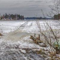 Совиный залив. Февраль. :: Наталия Крыжановская