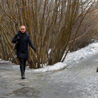 Городские картинки :: Александр Павленко