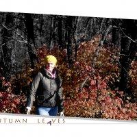 Золотая осень :: F_Alex U