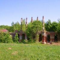 Руины дома-усадьбы графа Завадовского :: Владимир