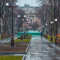 Аллея после дождя. :: Александр