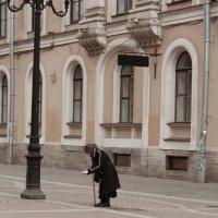 СПб Малая Садовая :: Наталья Голдина