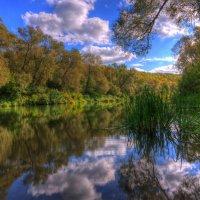 Летний полдень на реке :: Nikita Volkov