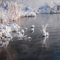 Зимние фантазии :: Анатолий 71