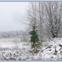 Начало зимы :: Валерий Викторович РОГАНОВ-АРЫССКИЙ