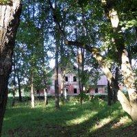 Руины в старом парке :: Анатолий Антонов