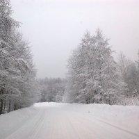 зима :: Viktor