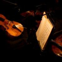 Скрипки. :: Юрий
