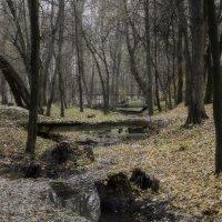 Осенний парк :: Руслан Кучеренко