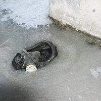 Ледяное безмолвие :: Роман Fox Hound Унжакоff
