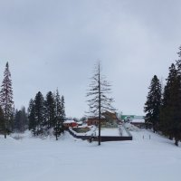 Зимний пейзаж :: Алексей Golovchenko