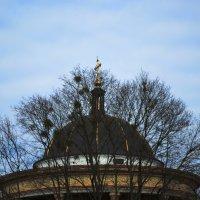 купол собора :: Михаил Bobikov