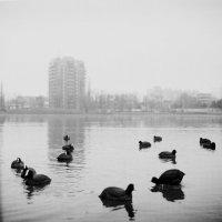 Тихая гавань родного города :: Ivan Plahteev