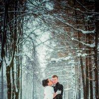 Зимняя аллея :: Аделика Райская