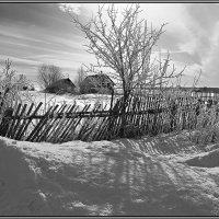 В деревне... :: Александр Никитинский