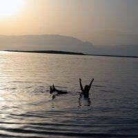 """сидение"" на водах Мёртвого моря. :: Лидия кутузова"