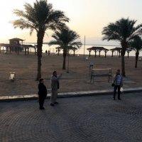 На Мёртвом море :: Лидия кутузова