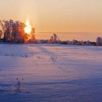Морозно... с утра. :: Александр Никитинский