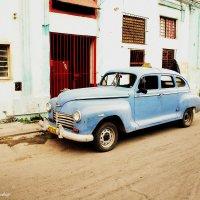 Blue taxi :: Arman S