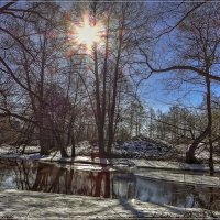 Весна, Весна, Весна!!!!!! :: Андрей Дворников