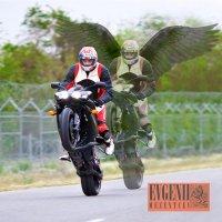 Не гоните быстрее ангела! :: Евгений Мезенцев
