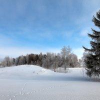 Уже весеннее небо... :: Александр Никитинский