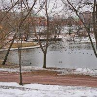 Зима в Царицыно. :: Юрий Шувалов