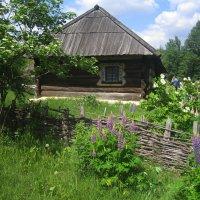Этнографический музей под открытым небом.Киев. :: Алина Тазова