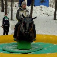 Масленица :: Вячеслав Завражнов