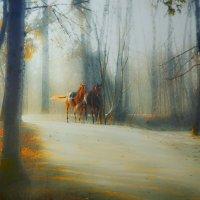 лошадки...)))) :: Ирэна Мазакина